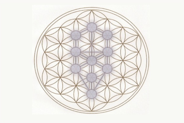 Axiatonal Alignment The Reconnection