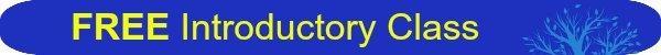 Free introductory class Feldenkrais Method Toronto